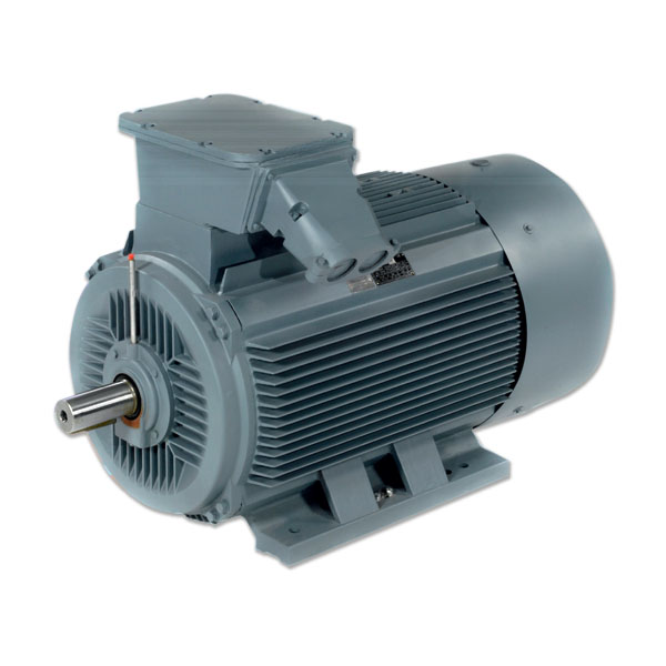 Marathon HJN Cast Iron IE2 AC Three Phase Squirrel-Cage Motors